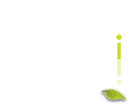 i4 Dezin north georgia web site design